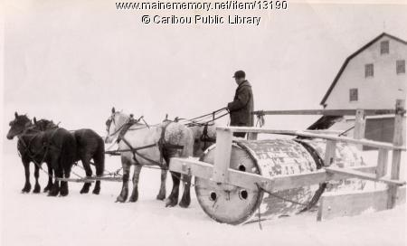 http://www.badgoat.net/Old Snow Plow Equipment/Plow Equipment/Snow Rollers/Snow Rollers/GW450H272-6.jpg