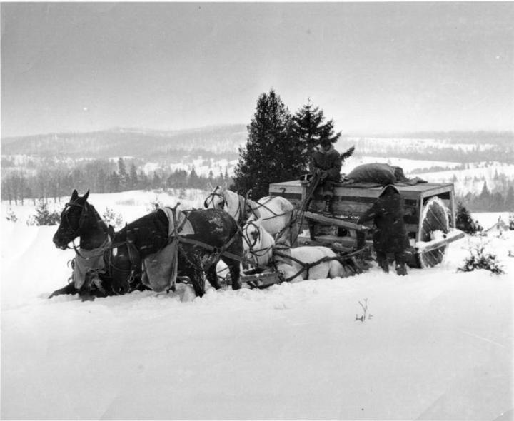http://www.badgoat.net/Old Snow Plow Equipment/Plow Equipment/Snow Rollers/Snow Rollers/GW720H590-5.jpg